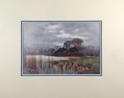 Mill Pond, Beaulieu