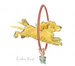 Cocker Hoop